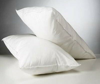 Hollow Fiber Twin Pack Pillows Bounce Back Pillow (2 in a pack)