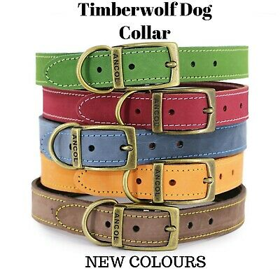 NEW ANCOL TIMBERWOLF LEATHER DOG COLLAR (SABLE or BLUE) with ENGRAVED ID TAG