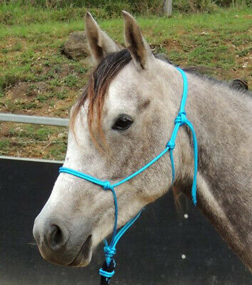 Aqua/Sky blue Quality,balanced Australian made rope halter,mini/pony/cob/full/XL