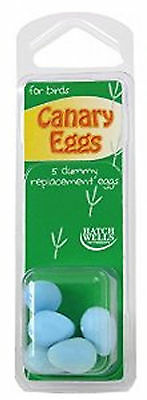 Hatchwell Canary Dummy Egg 5 Pack