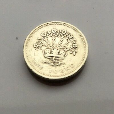 Rare 1991 UK One Pound Coin Irish Flax Plant £1 Coin Circulated Worcestershire