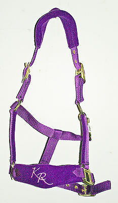 Padded Fleece Headcollars with Stitched Noseband - 5 Bright Colours
