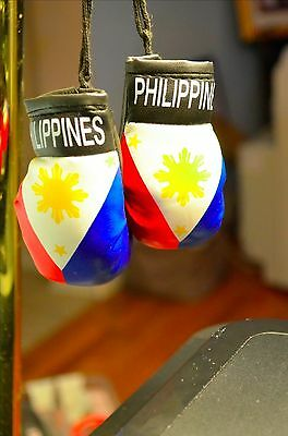 Philippine Boxing Mini Gloves Rear View Mirror Decal