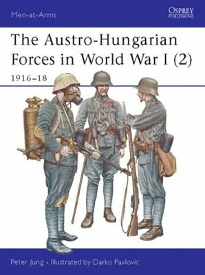 The Austro-Hungarian Forces in World War I: 1916-18 v. 2 9781841765952