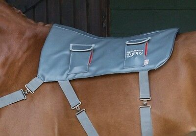 NEW Equilibrium Therapy Horse Massage Back Pad