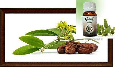 Pure Jojoba Oil 100 % Natural Without Preservatives Oil Premium, FREE DELIVERY