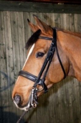 Becker Weymouth Bridle Equine Horse Tack & Equipment