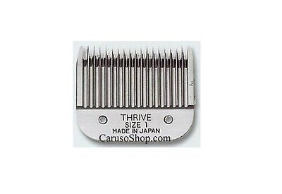 Testina per Tosatrice Thrive 1, 3mm