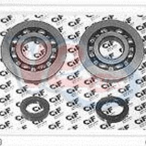 Vespa ET2 LX LXV S 50 Crank Bearing and Seal Kit