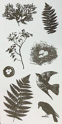 FISKARS Clear cling stamps NATURESCAPE - New for Card making & stamping etc