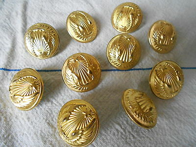 lot of 10 ANTIQUE French Brass COAT Buttons : marked  PARIS