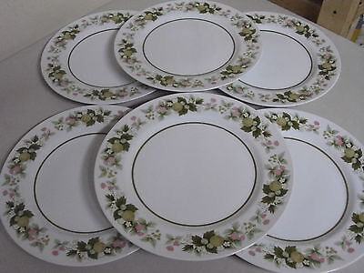 Lot Of 6 Mikasa Eclipse Dinner Plates 10 1/4 Inches