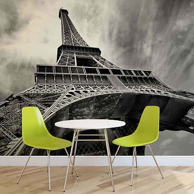 WALL MURAL PHOTO WALLPAPER XXL Paris Eiffel Tower Black White 221WS