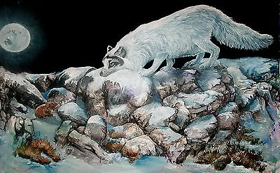 ARCTIC ENCOUNTER Original 15x22 ARTIC FOX Art Painting on canvas Sherry Shipley
