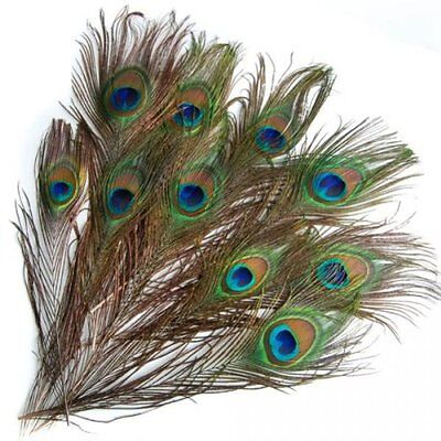 20 pcs Artificial peacock feathers w / Eyes T1