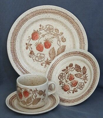 4 Dinner Place Setting Churchill Wild Strawberry Hand Painted England 16 pc Set