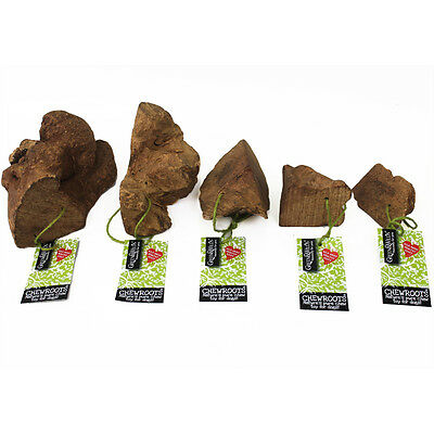 Natural Tree Chew Root Dog Chews - Various Sizes - Extra Small - Extra Large