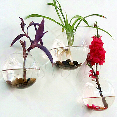 Wall Hang Glass Flower Planter Vase Terrarium Container Home Garden Decor Ball