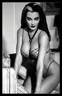 Lily Munster FRIDGE MAGNET 6x8 Poster Large Magnetic Canvas Print