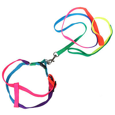 "New 44"" Long Rainbow Nylon Small Medium Size Dog Pet Harness Leash DT"