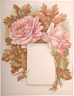 Red Rose & Blank Frame 1910 Victorian Color Litho 10x13 Print - Chromolithograph