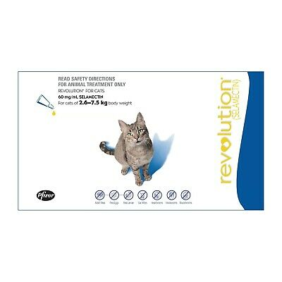 Revolution Flea, Intestinal Worm & Heartworm Control - Cats & Kittens 2.6-7.5kg