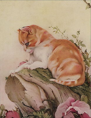 Old Vintage Maurice & Edward Detmold Art Print Animal SUPERIOR Cat Orange Tabby