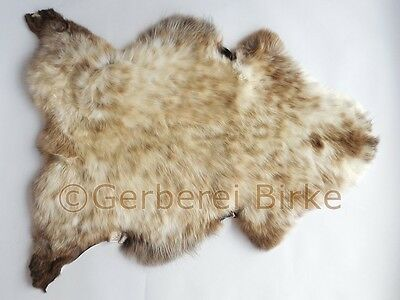 Lambskin / Sheep Fur ( with brown Natural tip) from the Gerberei Birke