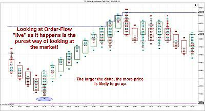 LQQK   Best Order-Flow Indicator Software Perfect for Futures Ninjatrader 7