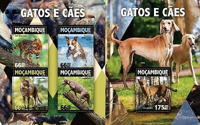 Z08 MOZ16108ab MOZAMBIQUE 2016 Dogs and Cats MNH Set