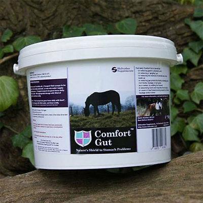Comfort Gut Equine Supplement - Natural Supplement for Horses