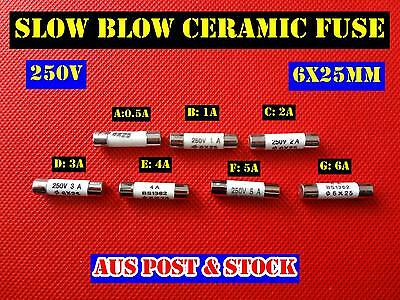 Ceramic Slow Blow Fuse Microwave Oven MWO Ceramic Fuse 250V  6x25mm (A204) NEW