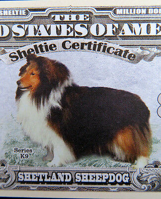 Shetland Sheepdog (Sheltie) FREE SHIPPING! Million-dollar novelty bill