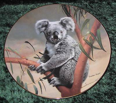The Koala 1990 Nature's Lovables Collector Plate by Charles Frace