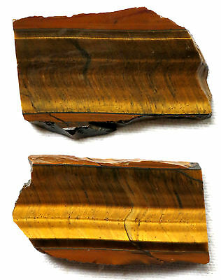 Tiger Eye Slab - Yellow - Honey - Tiger's - Lot of 2 - Preforms -  Africa
