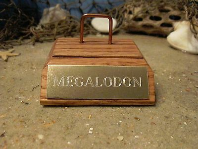 """MEGALODON SUPER MINI SHARK TOOTH FOSSIL STAND GOLD ENGRAVED 2 1/2"""" No Tooth"""