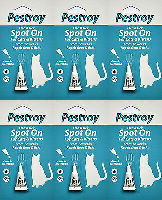 12 Months Pestrroy Flea and Tic treatment for Cats & Kittens For The Price of 9!