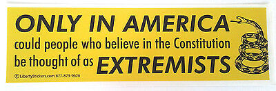 ONLY IN AMERICA COULD PEOPLE WHO BELIEVE Political Bumper Sticker L