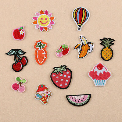 13pcs Embroidered Fruit Sew Iron On Patches Badge Hat Bag Fabric Applique Craft