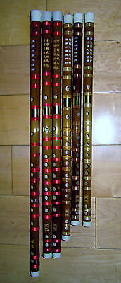 Dizi x 2 pieces two flutes (Chinese bamboo flute, good quality entry level)