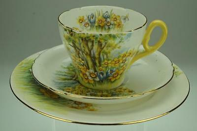 Antique Shelley Trio Demitasse Cup Saucer & Side Plate Daffodil Time 13370 VA116