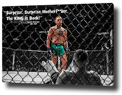 Conor Mcgregor Canvas Print Poster Photo Ufc 202 Wall Art 2016 Nate Diaz **new**