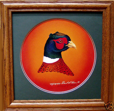 Ringneck Pheasant Head Study Signed Ducks Unlimited Edition  Pheasants Forever