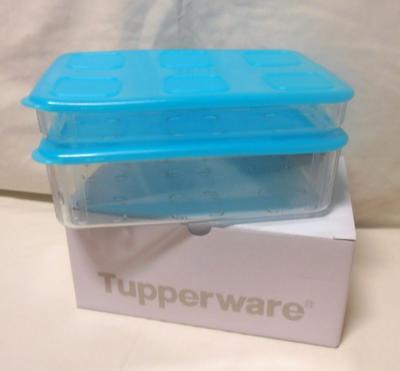 BNIP TUPPERWARE CLEAR MATES LARGE RECTANGLES  SET new colour