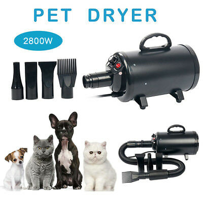 Powerful Stepless Speed 2800W Pet Dog Hair Grooming Fur Dryer Blaster Hairdryer