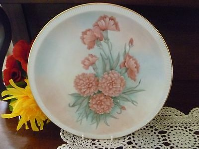 STUNNING HAND PAINTED FINE CHINA CARNATIONS  PLATE  26.5 cms