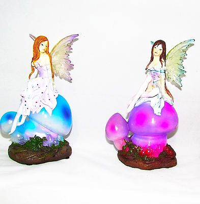 Faires~Fairy With Night Light Mushroom ~ 2 Assorted Colours