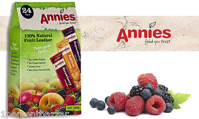 Annies Natural Fruit Leather 100% Fruit Bar 24 x 20g - 480g