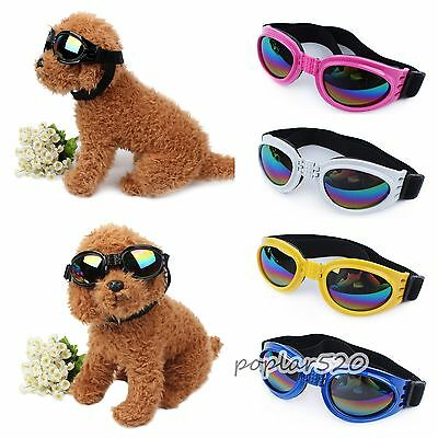 6Color Protection UV Sunglasses Anti-wind Dog Glasses Eye Wear Pet Cool Dress up