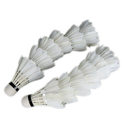 Regail 12Pcs Training White Teal Feather Badminton Shuttlecocks for Practice BF